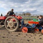 Travaux pratique de plantation de pommes de terre