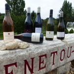 Ouvrier viticole polyvalent (dpt 18)